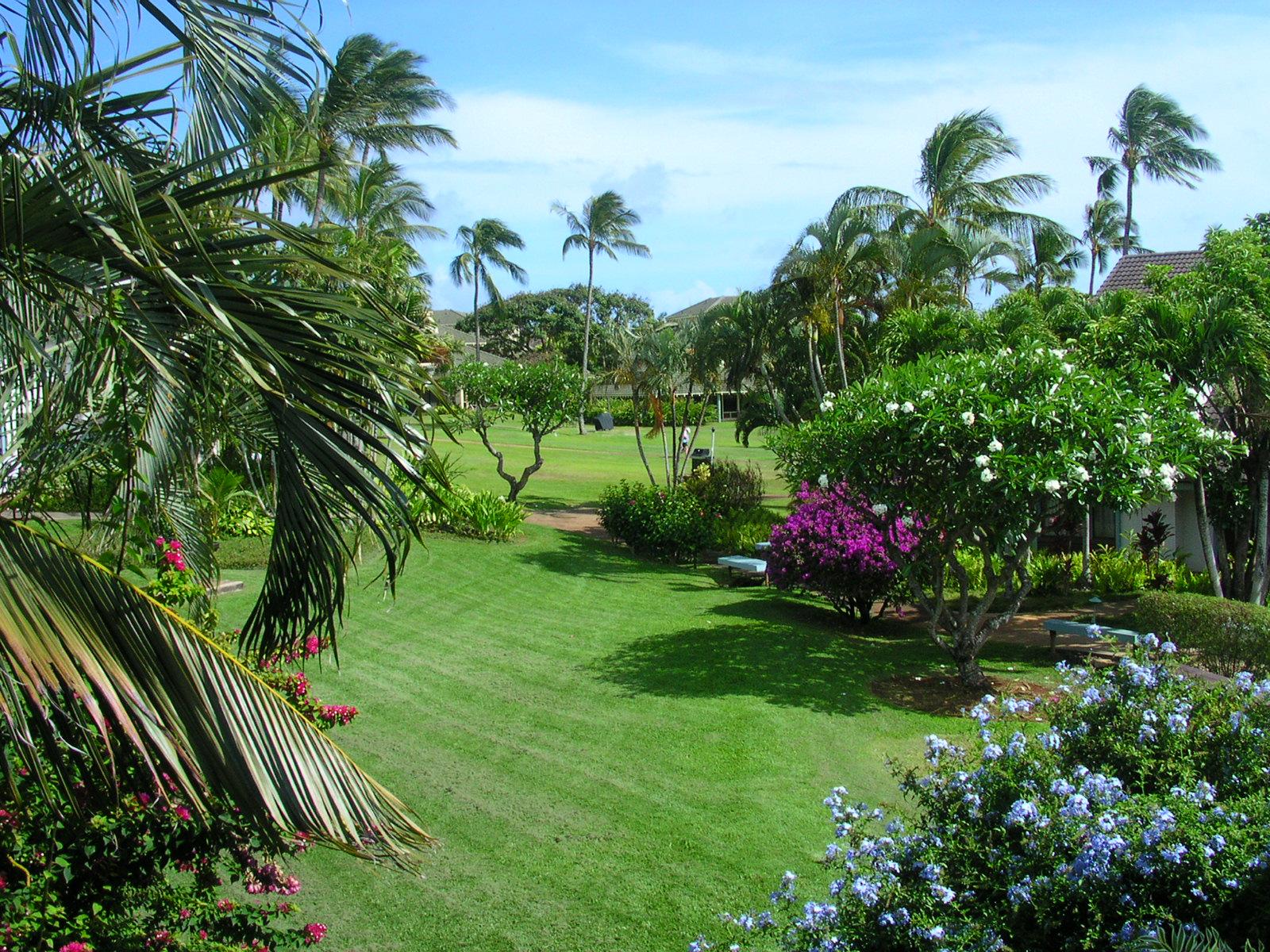 Hawaiian Garden Of Eden Available For 20m American Luxury